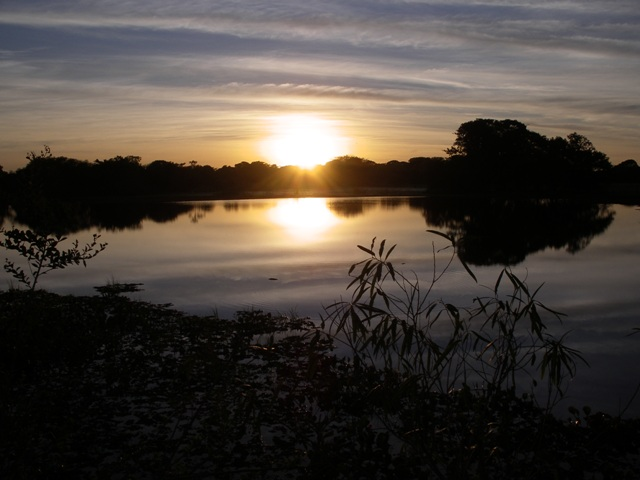 Pantanal_Morgen